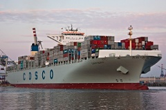Cosco-Glory-792782